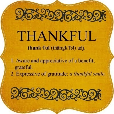 Image result for grateful and appreciative Thursday pic quote